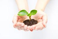 平和・環境・食料・エネルギー
